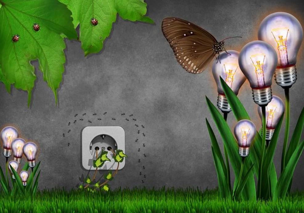 eco friendly rubbish removal