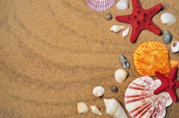 Top 10 Best Beaches Near London