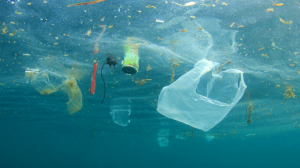 Plastic and the Ocean